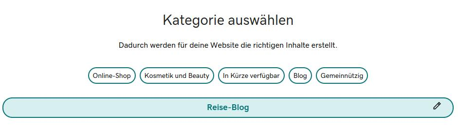 3-website-erstellen-kategorie-auswaehlen