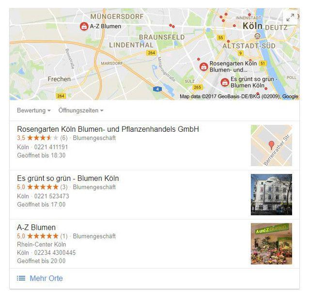 Abbildung - Lokales Suchergebnis