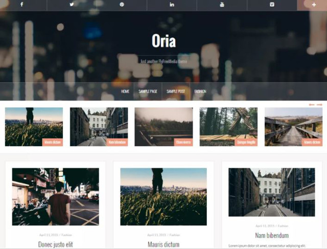Abbildung - Resonsive WordPress-Theme Oria