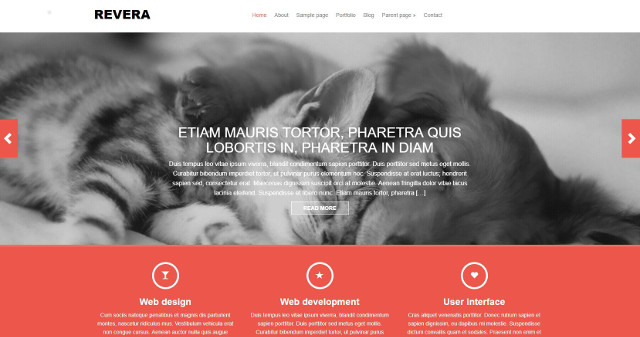 Abbildung - Resonsive WordPress-Theme Revera