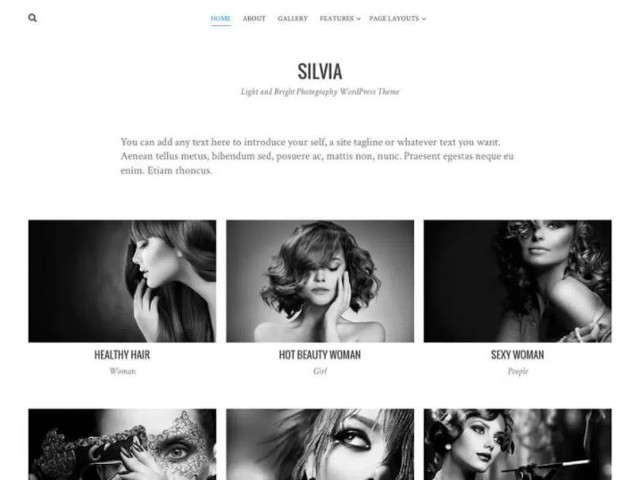 Abbildung - Resonsive WordPress-Theme Silvia
