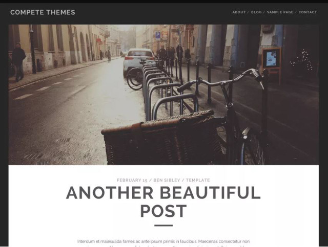 Abbildung - Resonsive WordPress-Theme Tracks