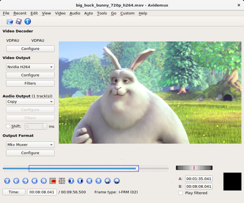 Abbildung01 - Avidemux Screenshot