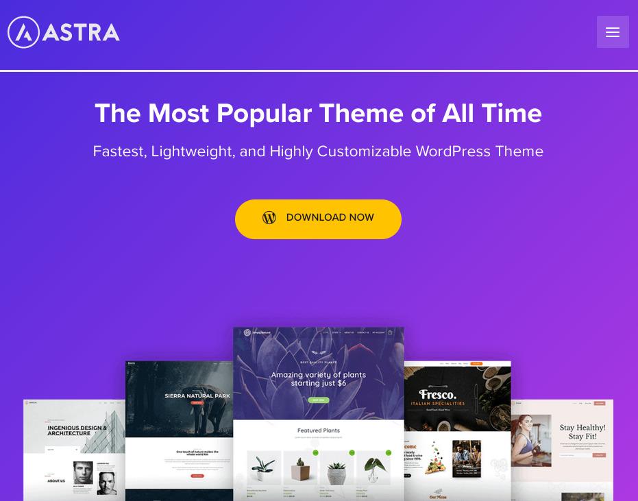 WordPress-Theme-Astra
