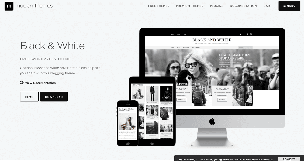 Abbildung - WordPress-Blog-Theme - Black-and-White